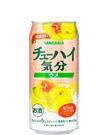 チューハイ 気分ウメ (お酒) 500ml缶