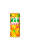 のみごろ果樹園オレンジ 240g缶