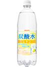 炭酸水レモン 1000mlペット
