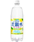 伊賀の天然水炭酸水グレープフルーツ 1000mlペット
